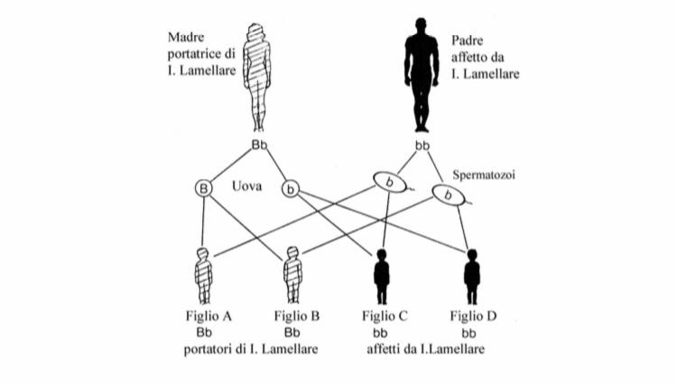 Genetica ed ereditarietà